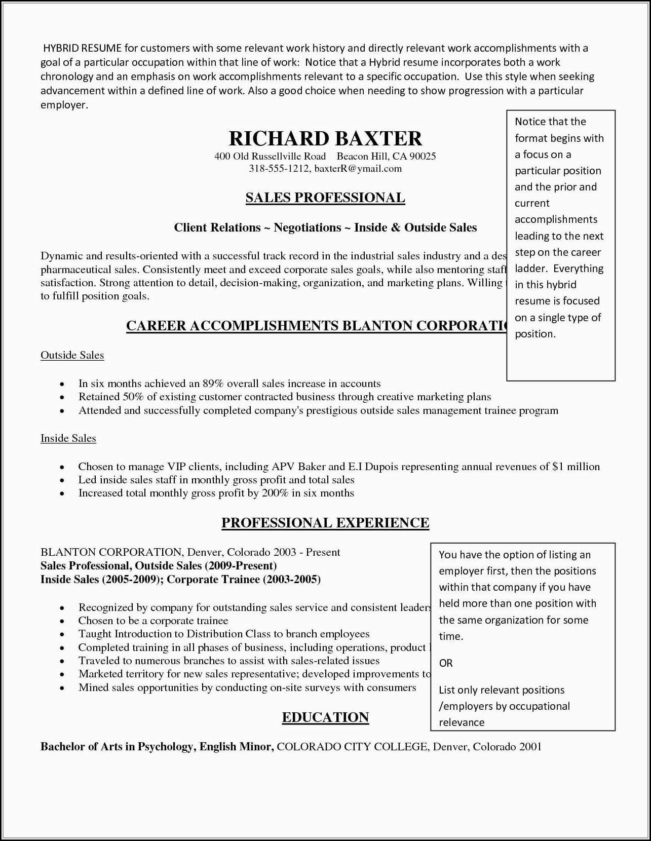 034 Template Ideas Free Combination Resume Awful for Combination Resume Template Word
