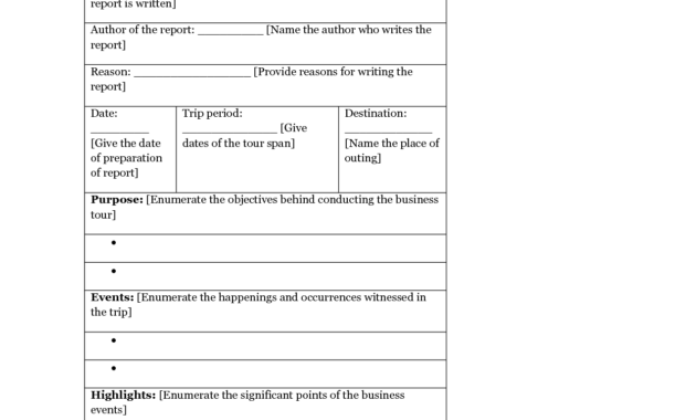 13 + Business Trip Report Examples - Pdf, Word, Apple Pages regarding Business Trip Report Template