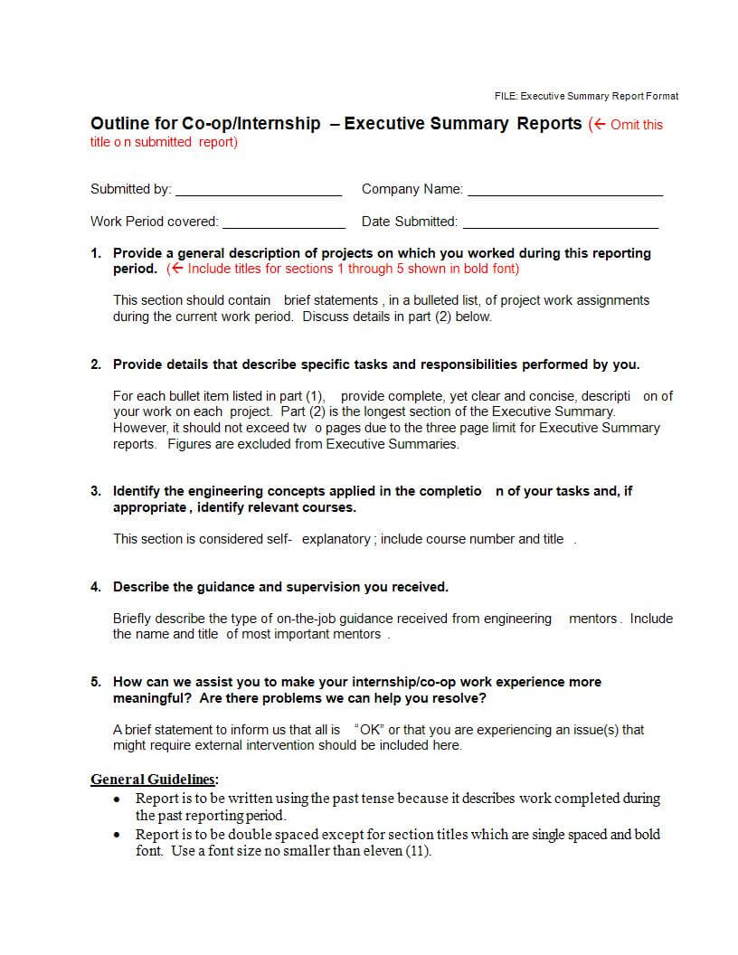 22+ Executive Summary Samples - Pdf, Doc | Examples within Executive Summary Report Template