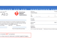 27 Images Of Bls Blank Template | Zeept pertaining to Cpr Card Template