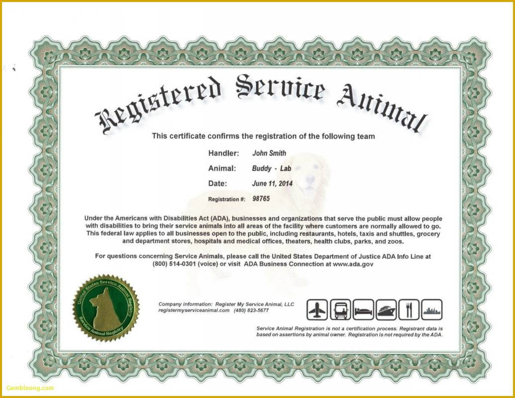 6 Unique Free Printable Service Dog Id Card Template For The In Service Dog Certificate Template