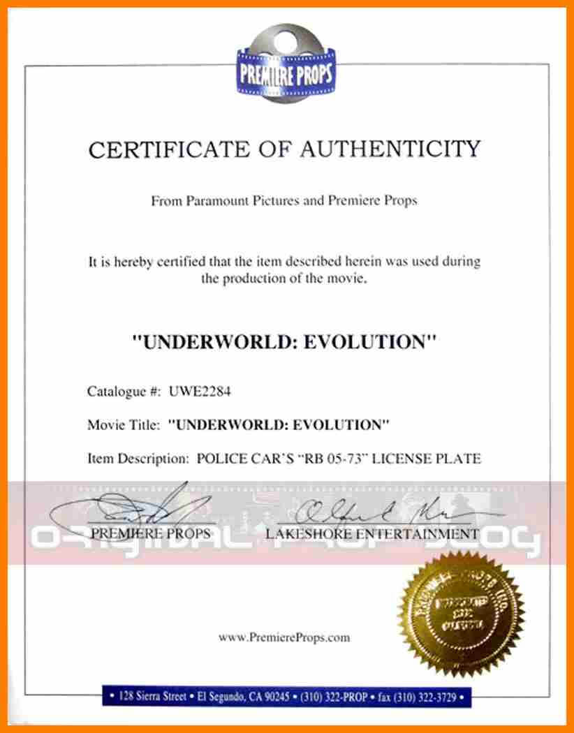 8+ Certificate Of Authorization Template | Weekly Template For Certificate Of Authorization Template