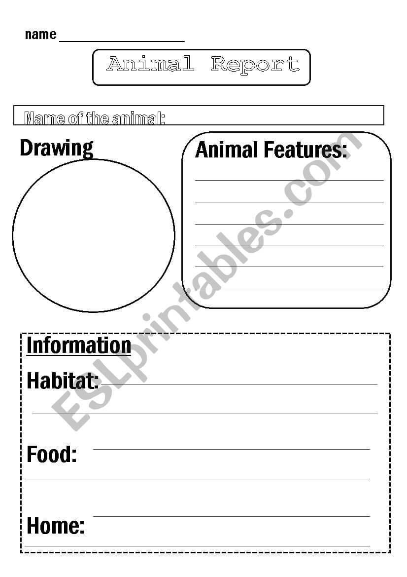 Animal Report Template - Esl Worksheetflora.m123 regarding Animal Report Template