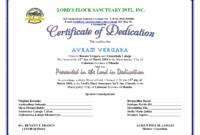 Baby Dedication Certificate Template – Atlantaauctionco in Baby Dedication Certificate Template