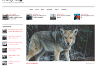 Best Aggregator Themes For WordPress – Wp Mayor pertaining to Drudge Report Template