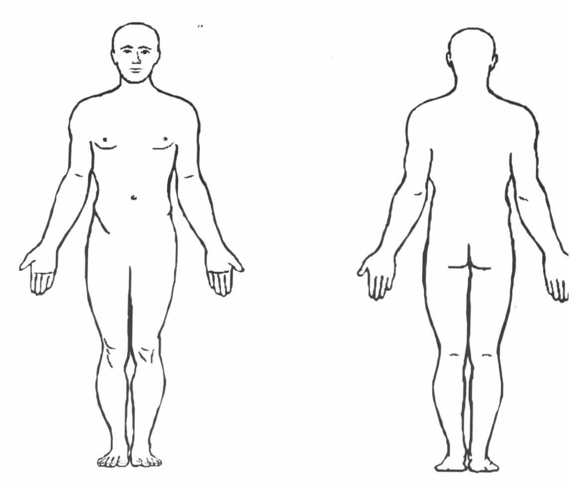 Blank Body Diagram - Technical Diagrams throughout Blank Body Map Template