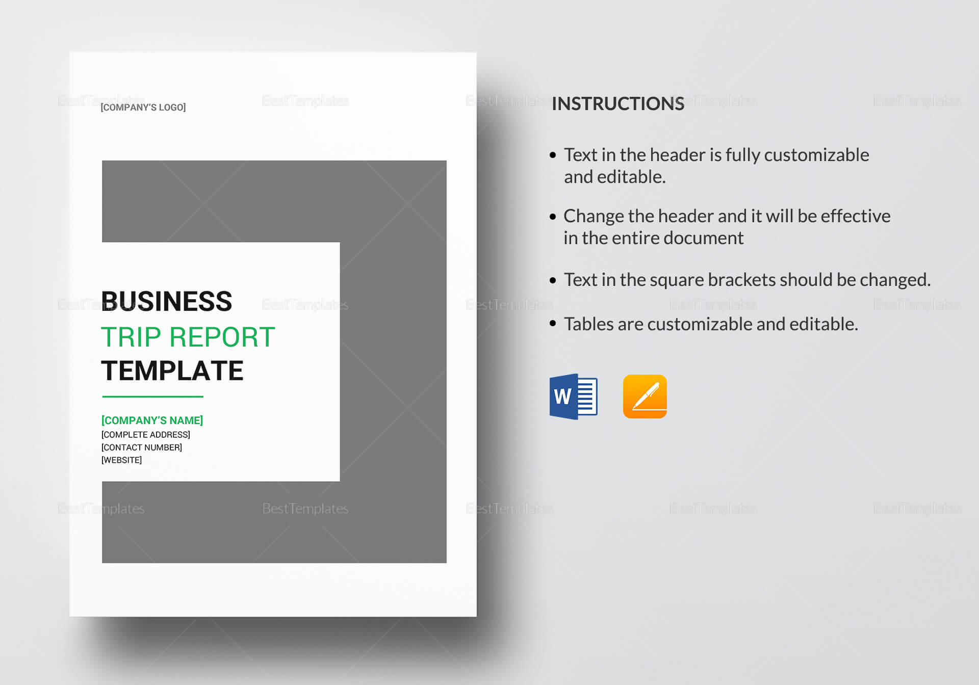 Business Trip Report Template With Business Trip Report Template
