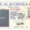 California Drivers License Template | California In 2019 within Blank Drivers License Template