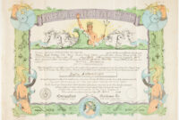 Certificate – Crossing The Equator, Issued To Zofia throughout Crossing The Line Certificate Template