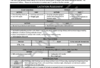 Doctor Report Template—Custom Header in Check Out Report Template