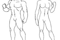 Download Blank Body Drawing Human Of () Drawing Images with regard to Blank Body Map Template