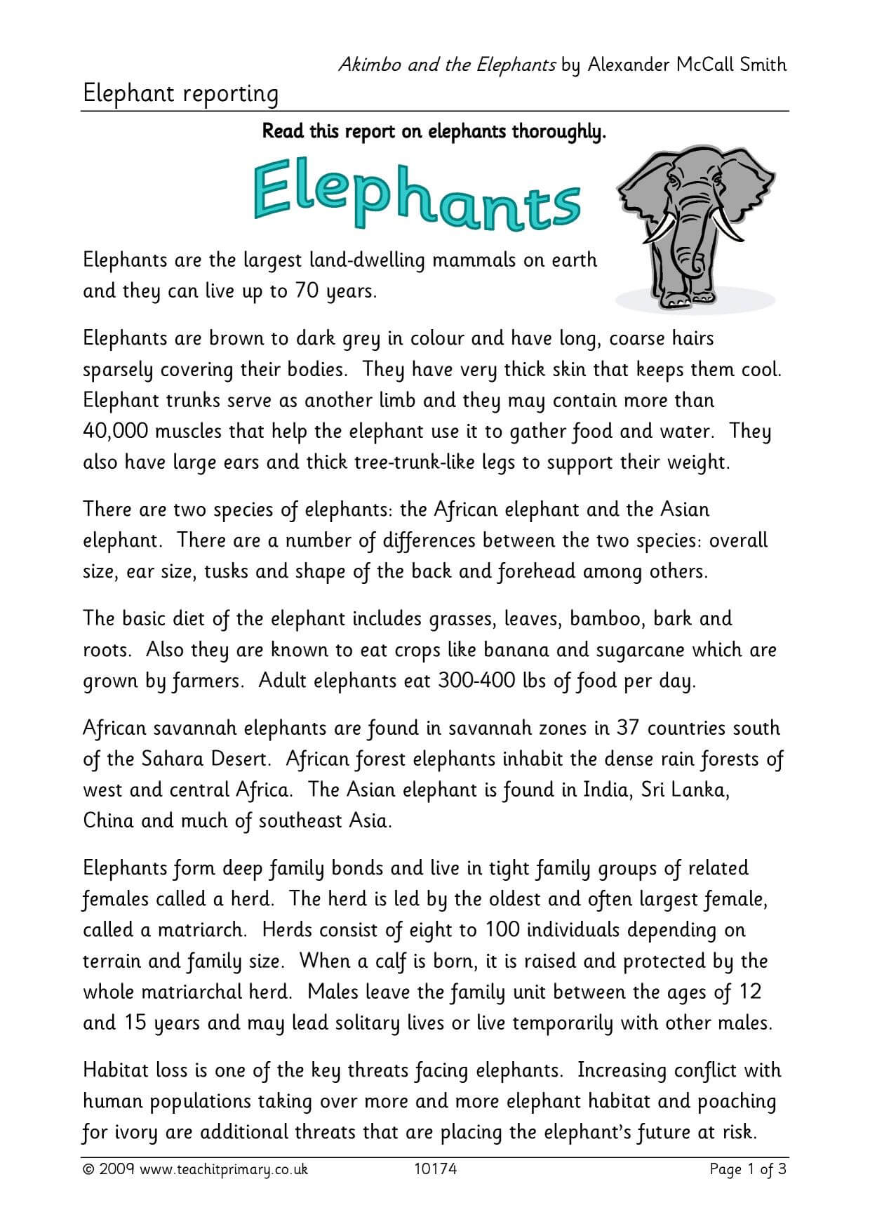 Elephant Report Writing with Report Writing Template Ks1
