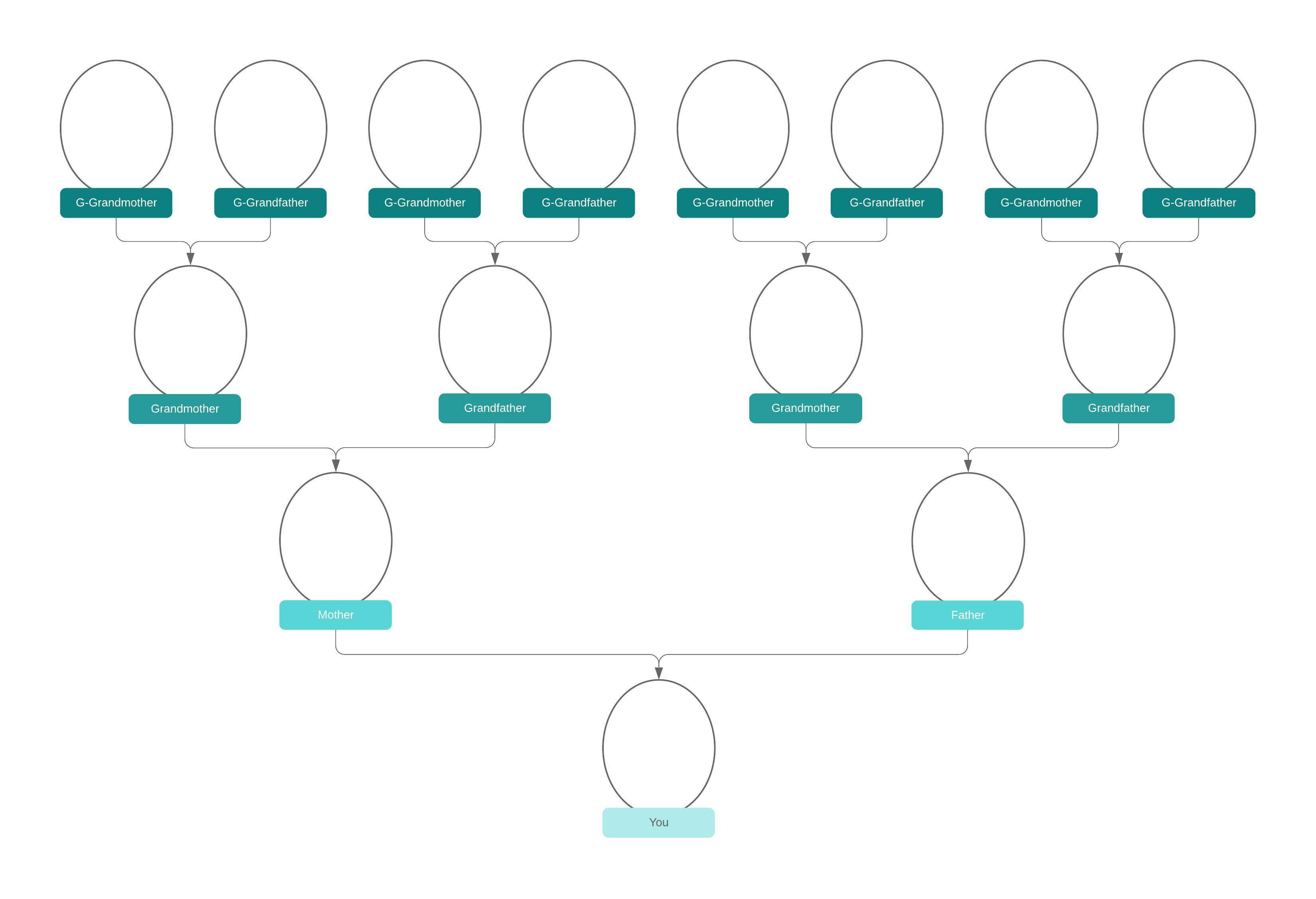 Family Tree Generator | Lucidchart with Blank Tree Diagram Template