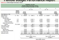 Flexible Budgets And Standard Cost Systems – Ppt Download within Flexible Budget Performance Report Template