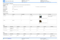 Free Construction Daily Report Template (Better Than Pdf within Monthly Activity Report Template
