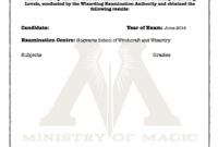 Harry Potter O.w.l's Certificate Blank Template! | Harry Pertaining To Harry Potter Certificate Template