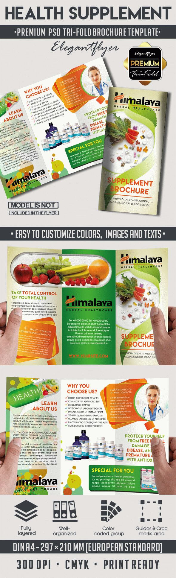 Health Supplement Brochure with regard to Nutrition Brochure Template