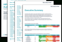 Hipaa Configuration Audit Summary – Sc Report Template with Information System Audit Report Template