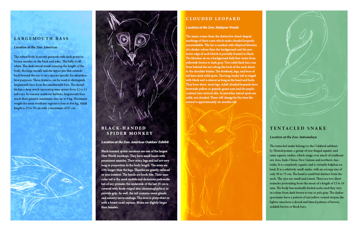 Indesign Projects | Timothy Rose regarding Zoo Brochure Template