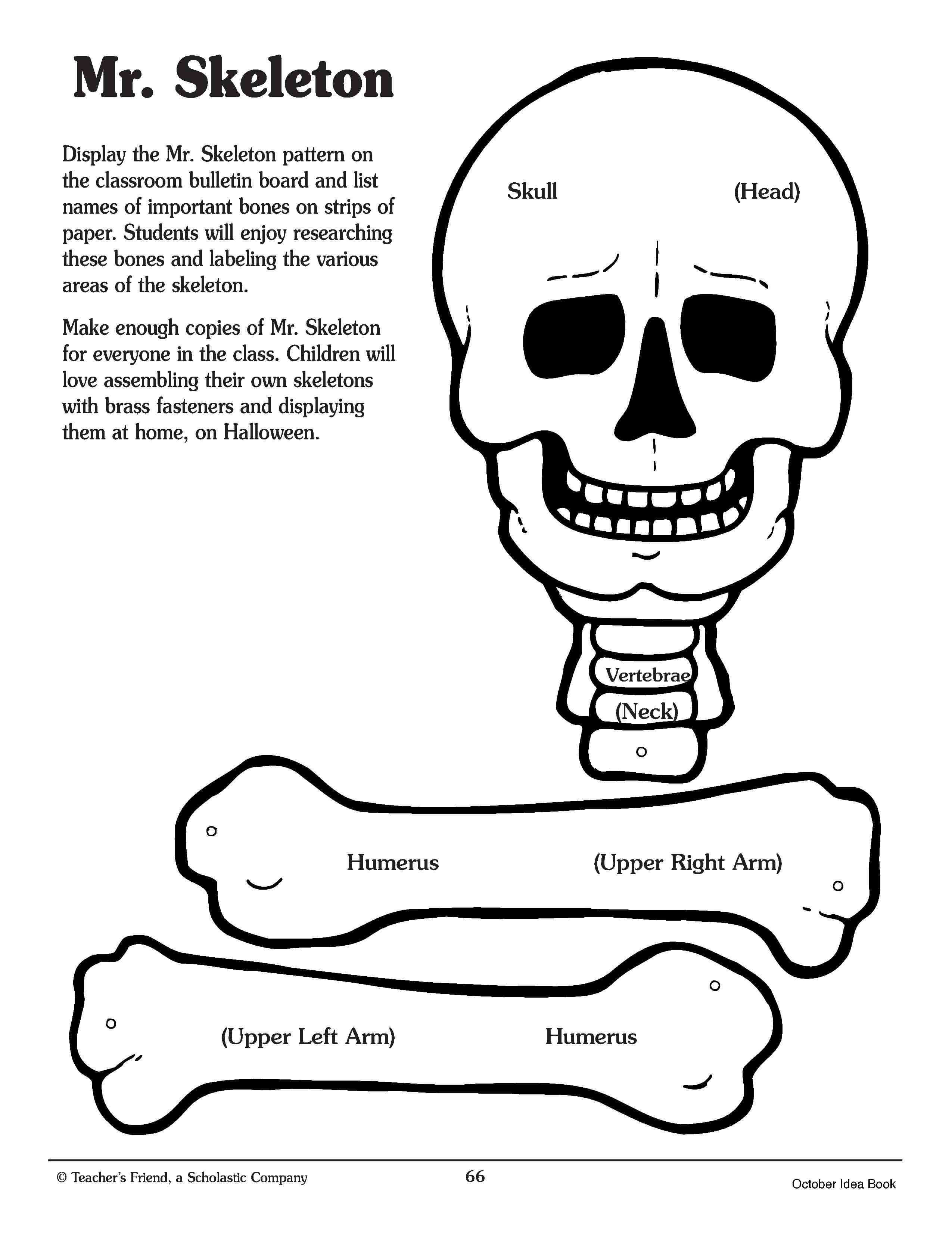 Mr. Skeleton Printable. Kids Can Cut Out And Assemble Entire with Skeleton Book Report Template