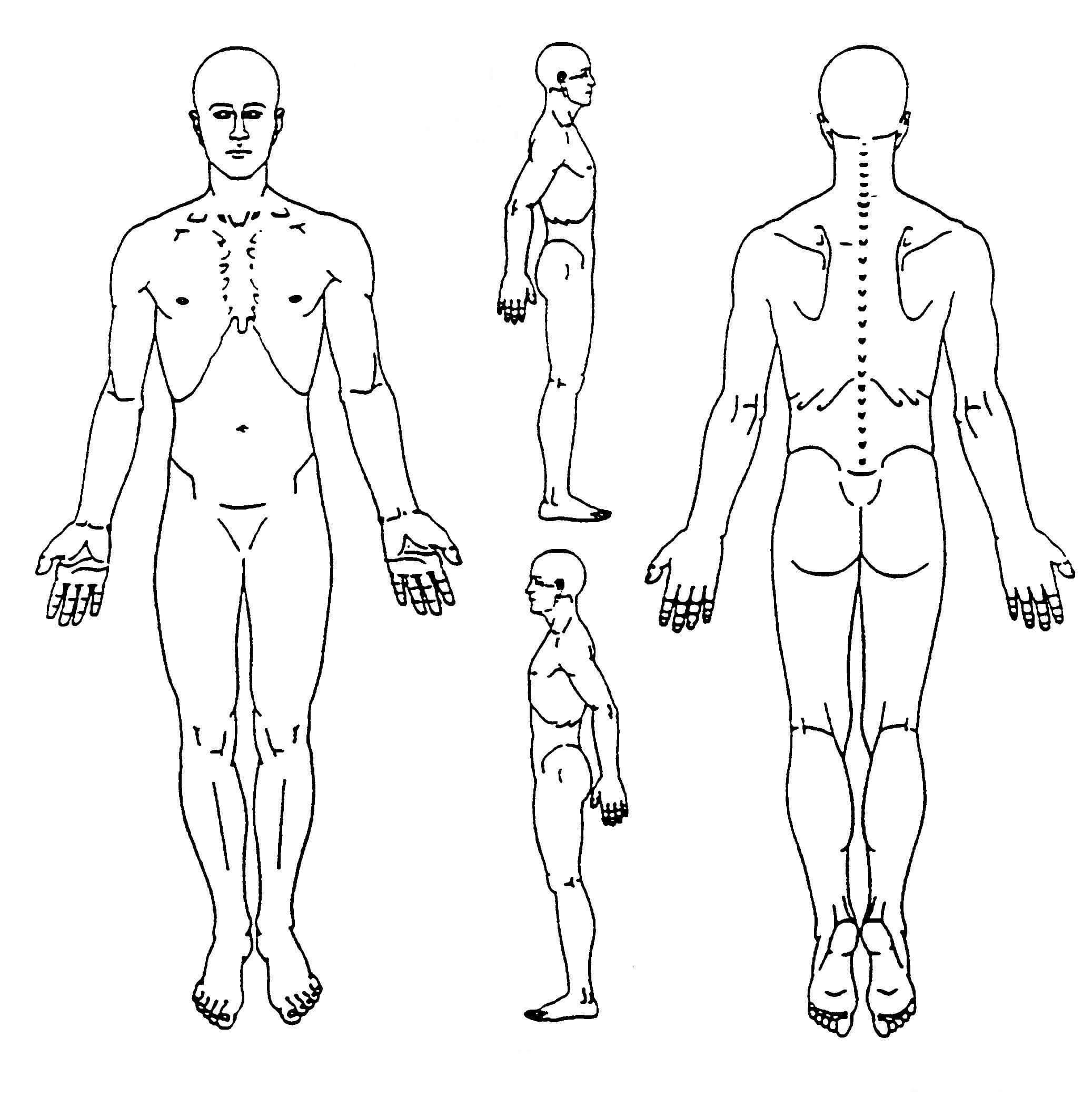 Pin On Body Diagram regarding Blank Body Map Template