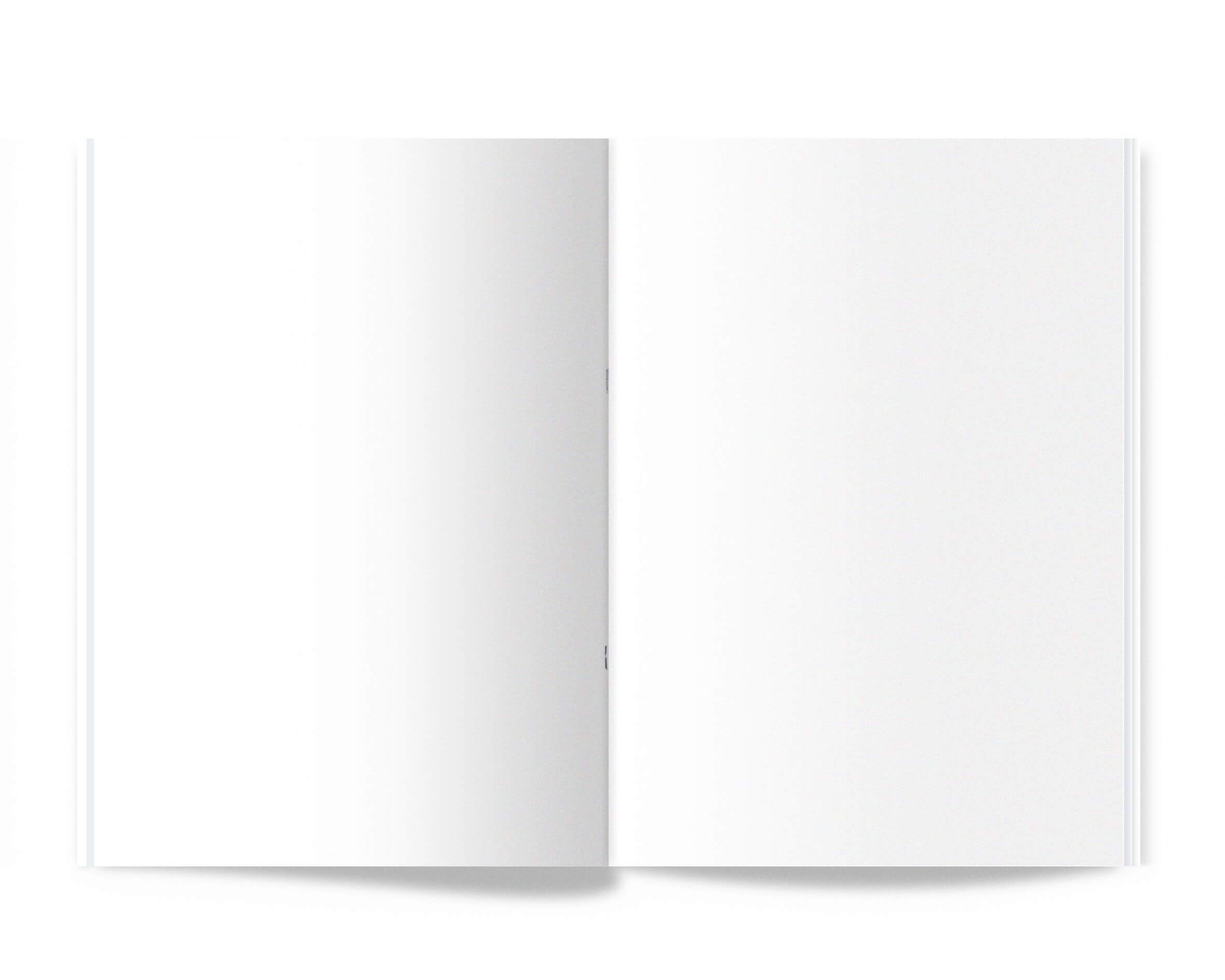 Pin On Free Resources Intended For Blank Magazine Spread Template