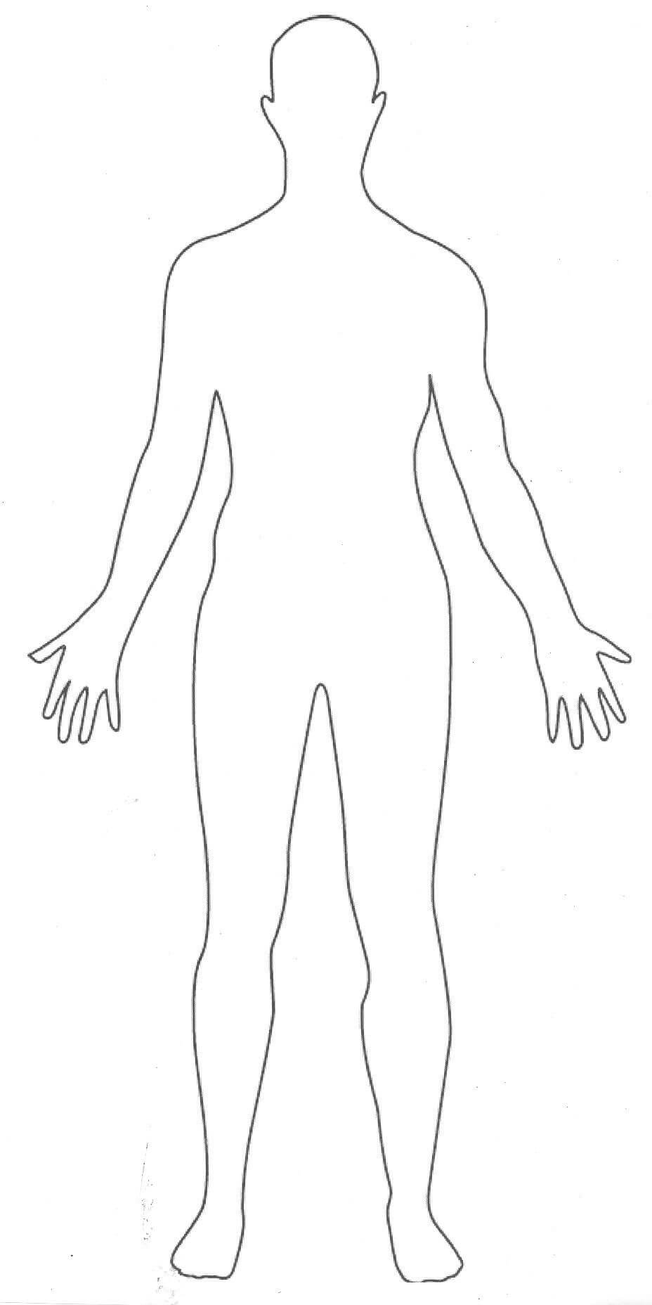 Pinrandy Sassmann On Images | Human Body Drawing, Body Throughout Blank Body Map Template