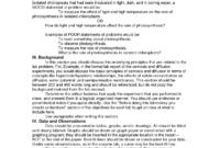 Pintee Gaiti On Did You Know   Science Writing, Report for Science Lab Report Template