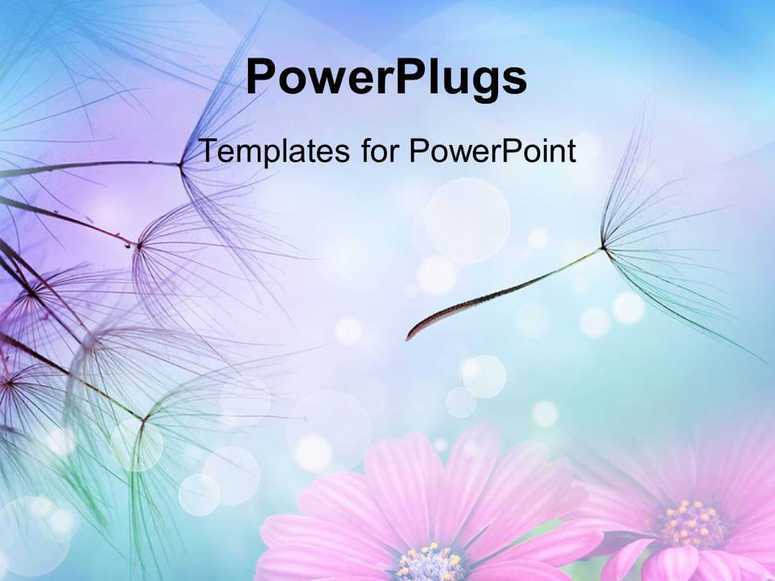 Pretty Powerpoint Background - Major.magdalene-Project inside Pretty Powerpoint Templates