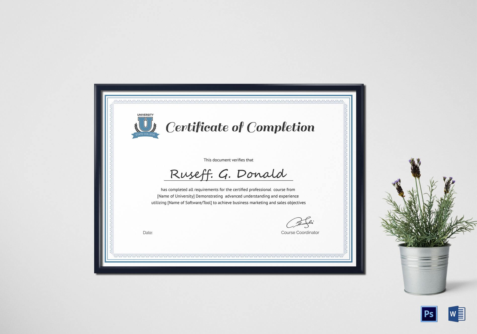 Professional Course Completion Certificate Template within Sales Certificate Template