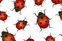 Realistic Detailed Insect Ladybug Seamless Pattern regarding Blank Ladybug Template