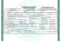 San Francisco Birth Certificate Template   Birth Certificate with regard to Fake Death Certificate Template