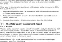The Cihi Data Quality Framework – Pdf pertaining to Data Quality Assessment Report Template