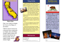 Travel Brochure Examples For Students   Theveliger in Student Brochure Template