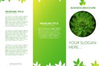 Tri-Fold Brochure Template Google Docs in Google Docs Tri Fold Brochure Template